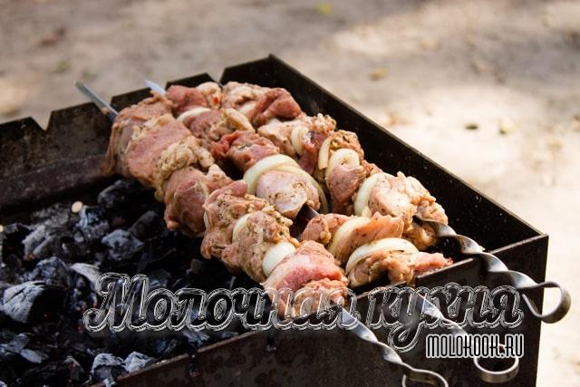 4. Mint marinade for kebab