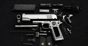 molon labe gun