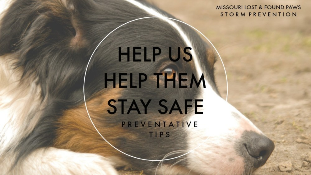 Storm Prevention Help Us Help Them
