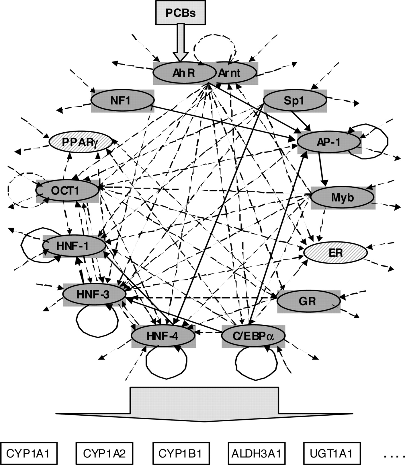 A Novel Computational Approach for the Prediction of