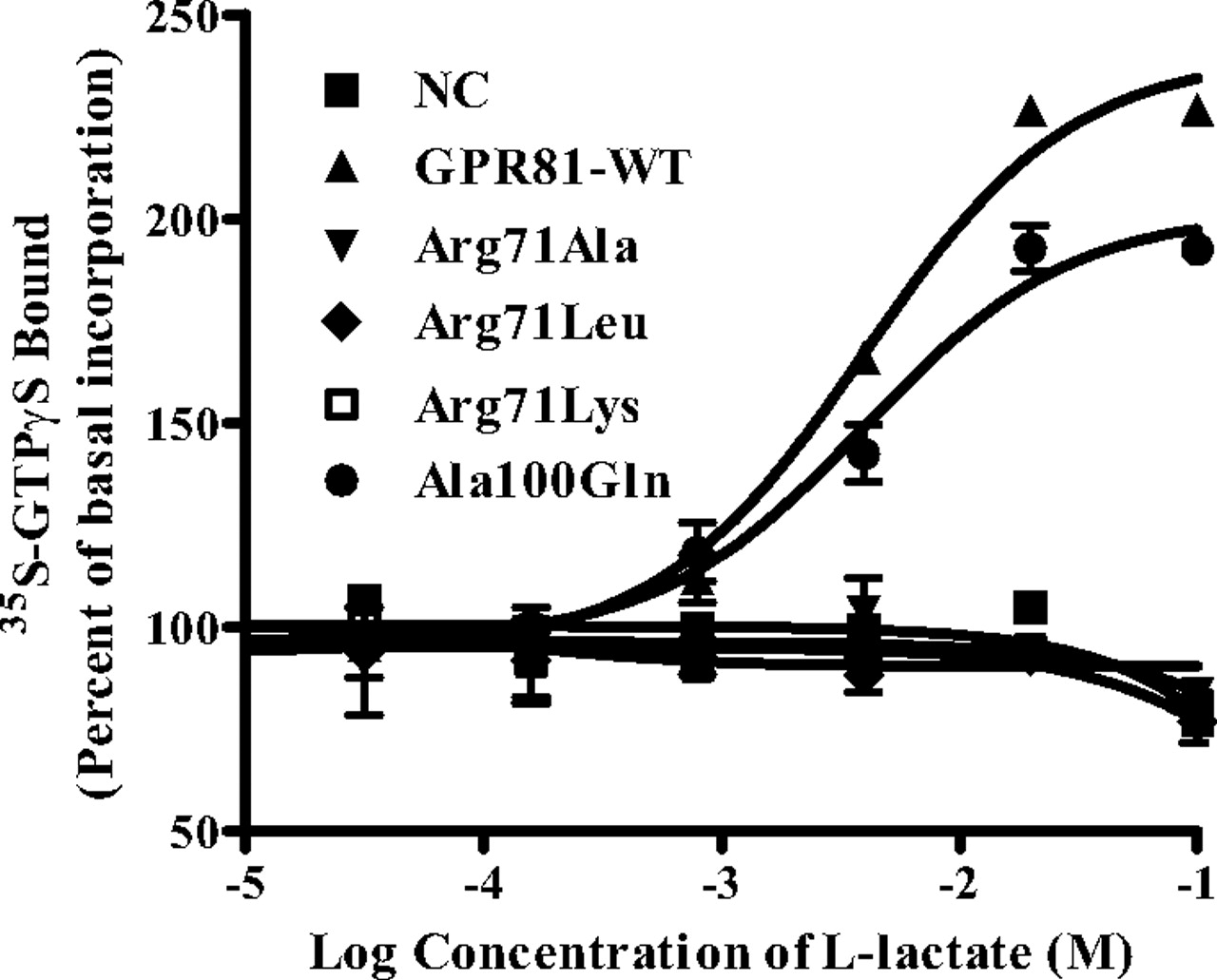 Study of GPR81, the Lactate Receptor, from Distant Species