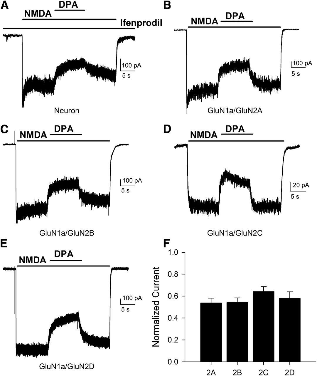 Noncompetitive, Voltage-Dependent NMDA Receptor Antagonism