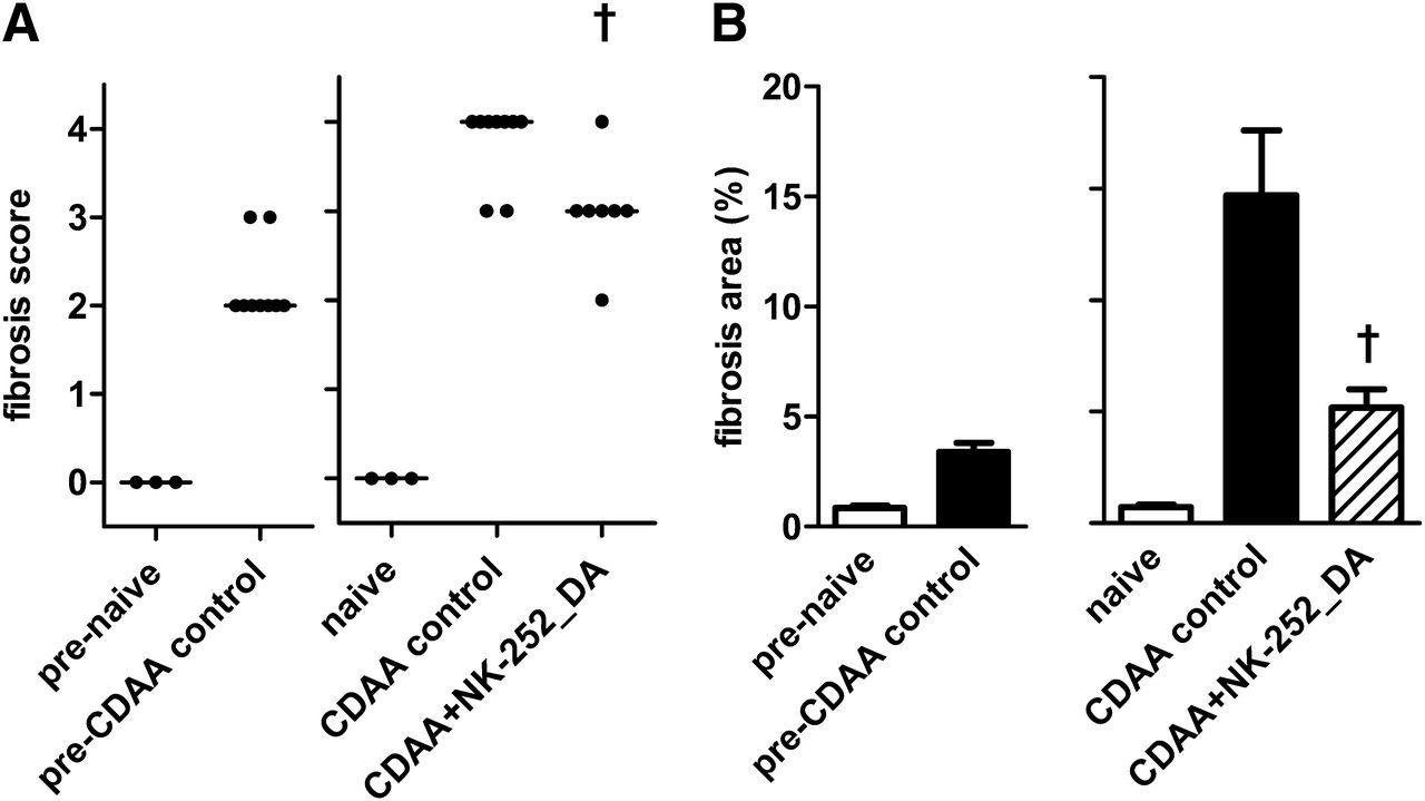 Nrf2 Activators Attenuate the Progression of Nonalcoholic