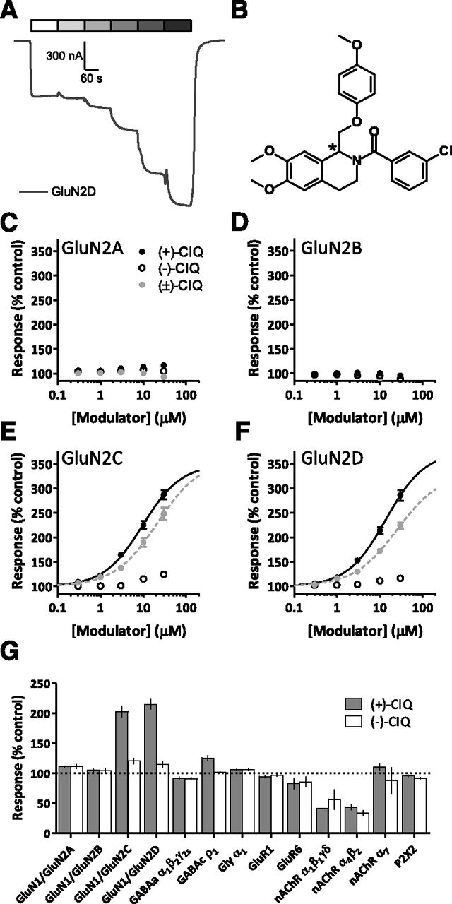 GluN2D-Containing N-methyl-d-Aspartate Receptors Mediate