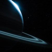 Stardust, Rosin