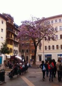 In Trento