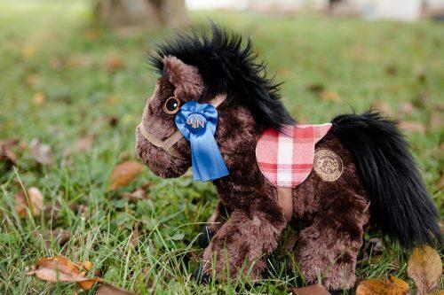 piccoli horse