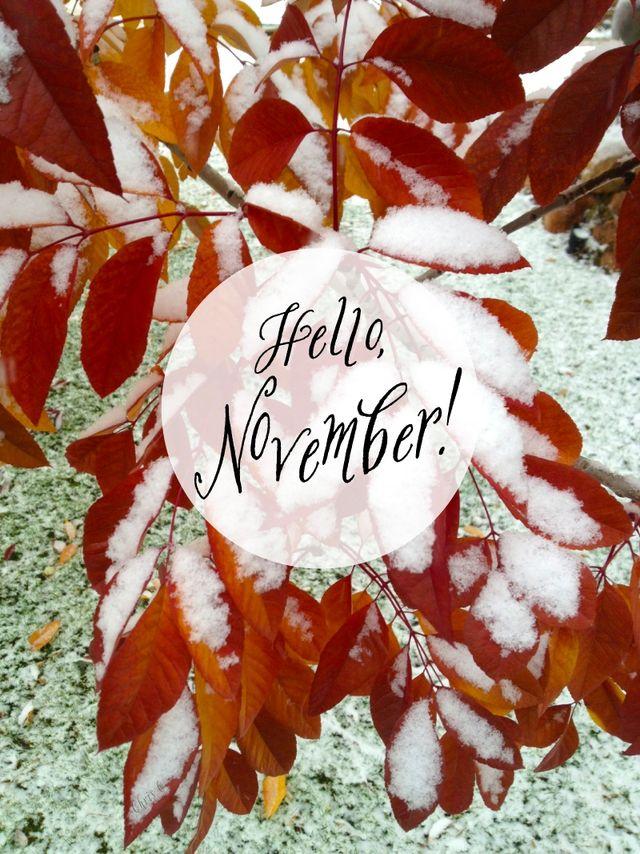 Cute Fall Leaves Wallpaper Momathon Blog Hello November