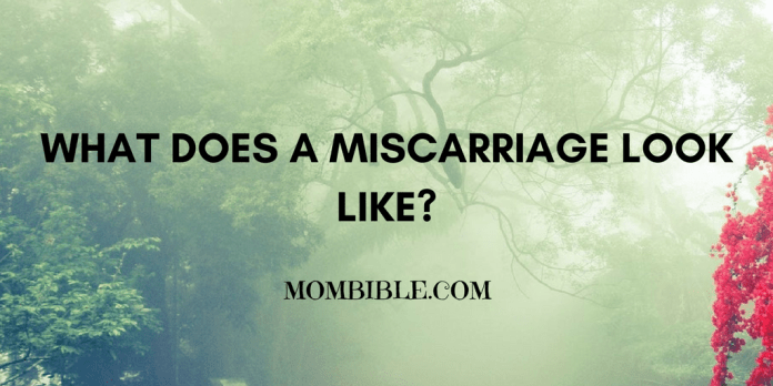 What Does A Miscarriage Look Like?