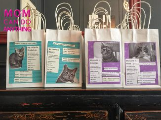 Great Idea for Kids Birthday Party Gift Bags-2