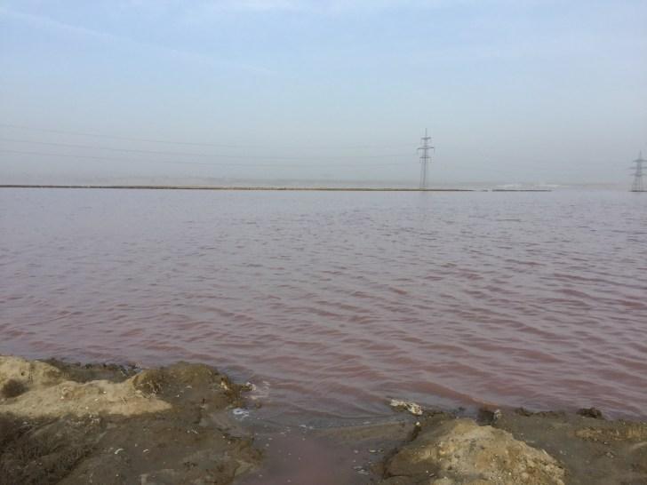 アゼルバイジャン 湖 ピンク色