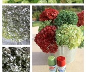 spray paint hydrangea flowers