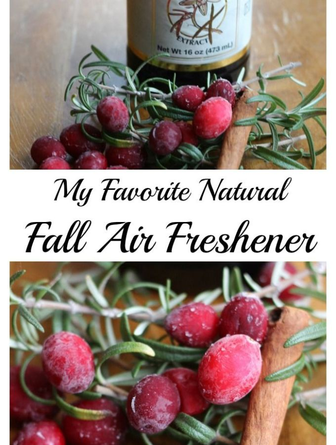 My Fall Natural Air Freshener.