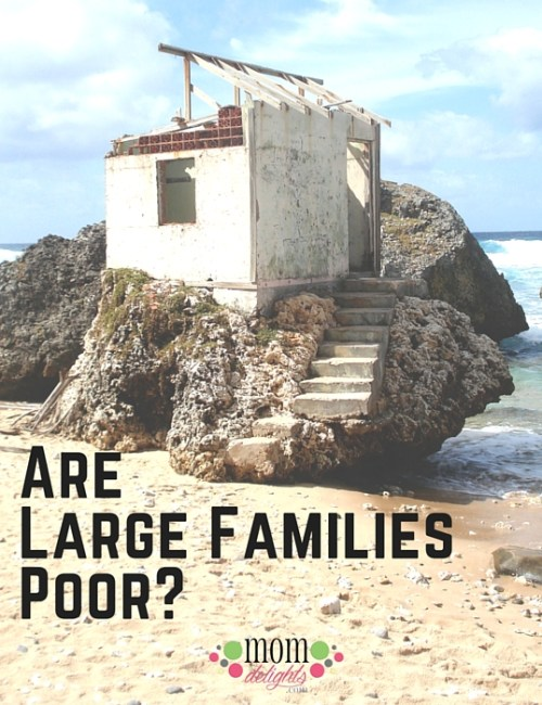 Are Large Families Poor?