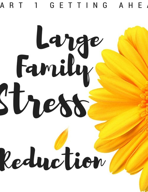 Large Family Stress Reduction: Getting Ahead, Part 1