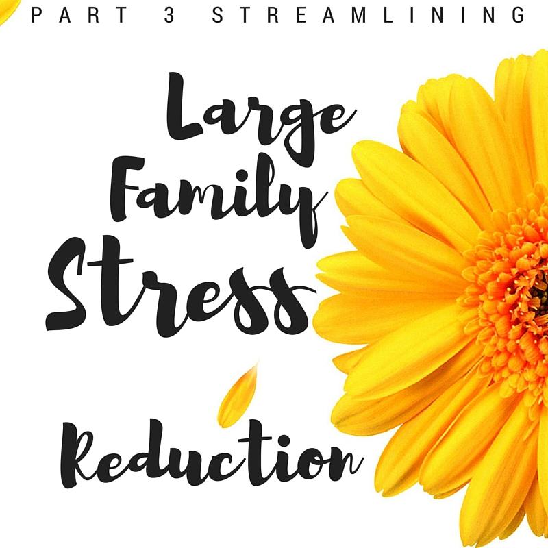 Large Family Stress Reduction: Streamlining