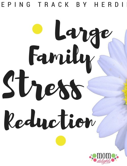 Large Family Stress Reduction: Keeping Track by Herding
