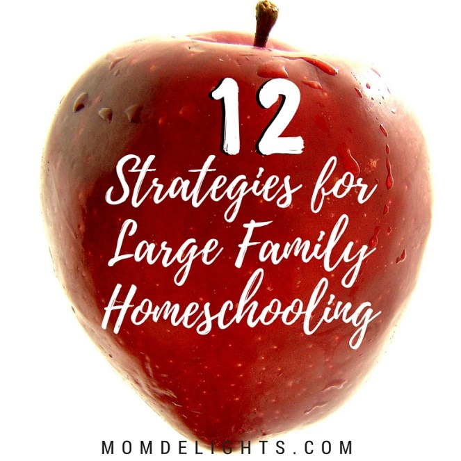 large family homeschooling 12 strategies title