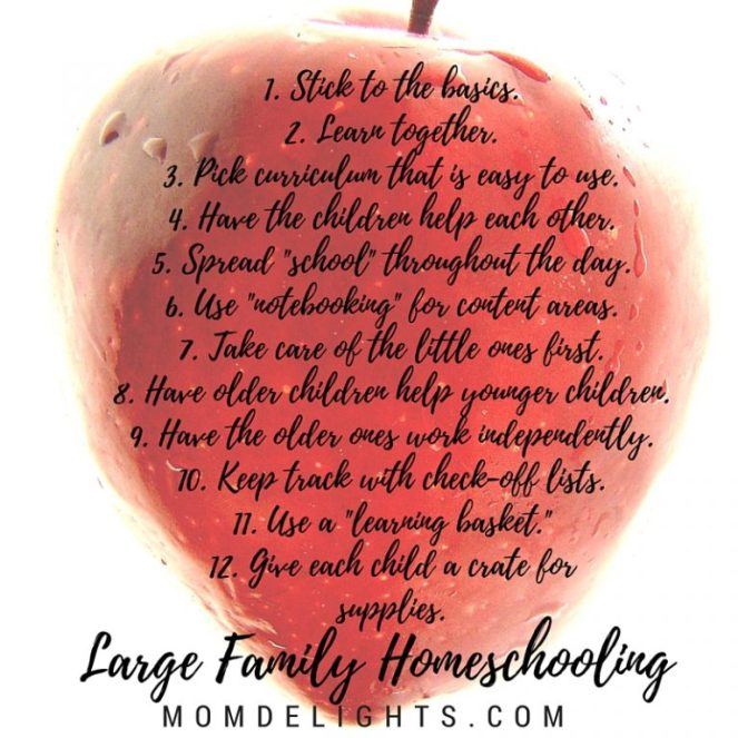 large family homeschooling list