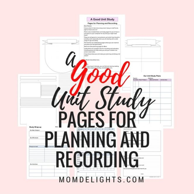 A good unit study- pages for planning and recording