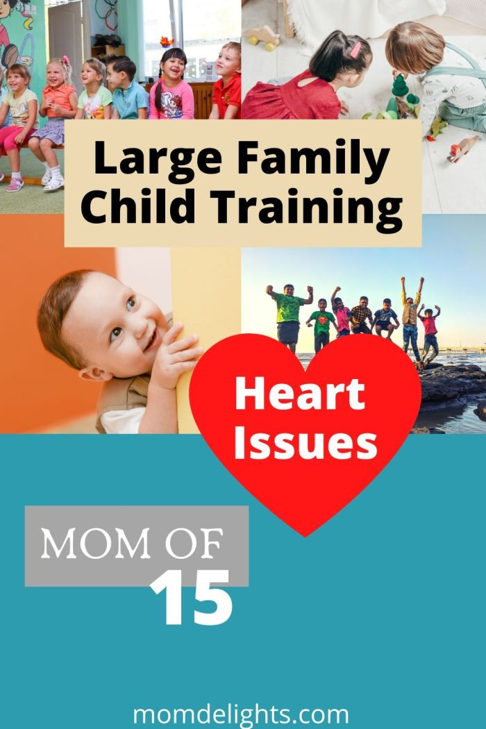 large family child training tips from a mom of 15 dealing with the underlying heart issues