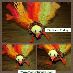 pineturkey