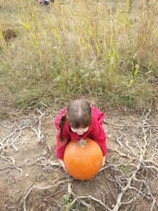 pumpkinpick1