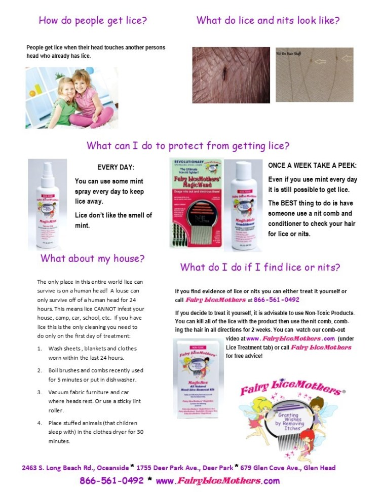 lice Flyer for school 2 pages (1)