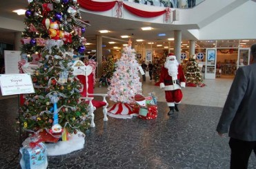 Festival of Trees pic