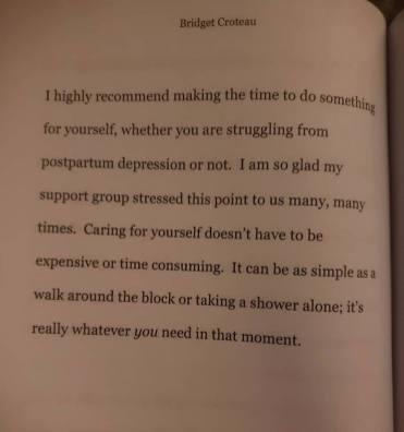 bridget book