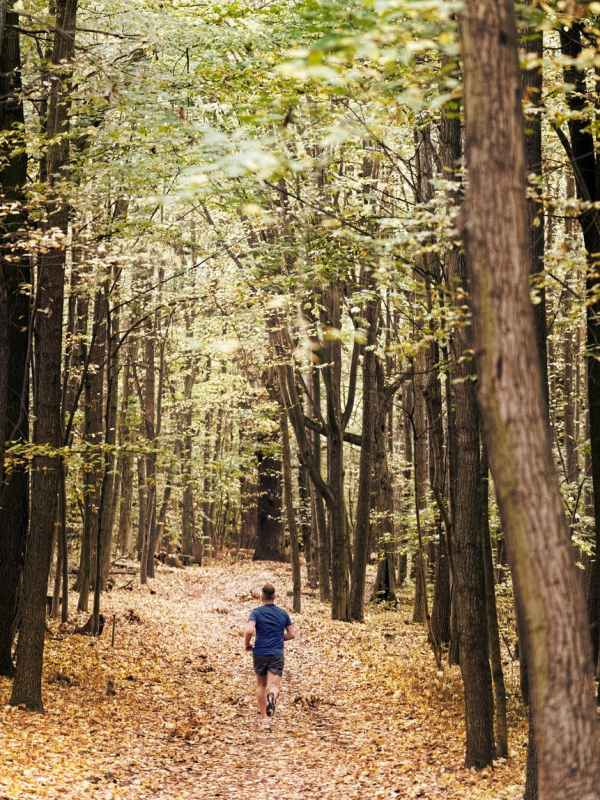 person jogging in forest