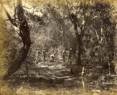Hunting Party in Jungle Track [Image Courtesy: www.imagesofceylon.com ]