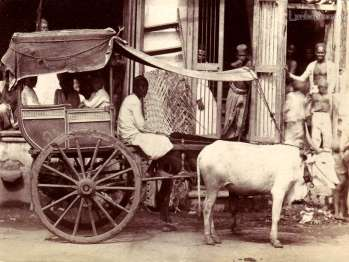 Bullock Cart & Driver (ca. 1870) [Image Courtesy: www.lankapura.com ]