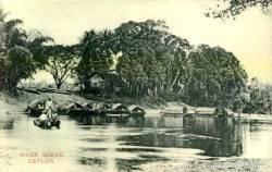 River Scene in Ratnapura
