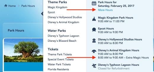 Extra Magic Hours on Disney website