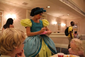 Drizella at 1900 Park Fare