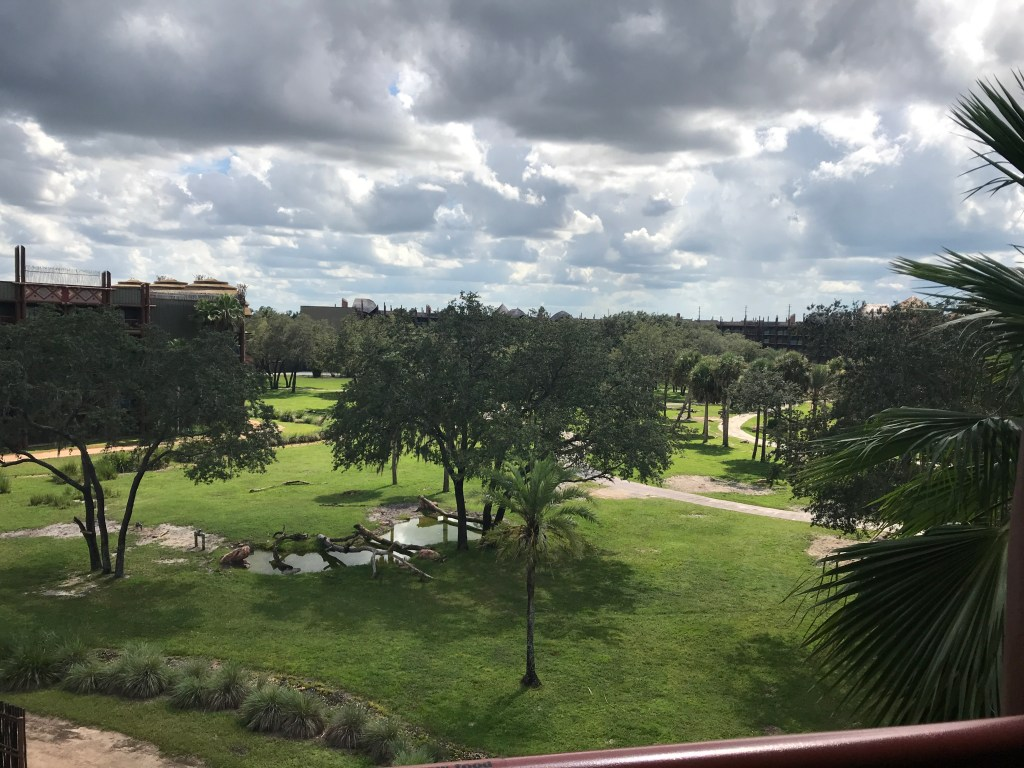 savannah view animal kingdom lodge room