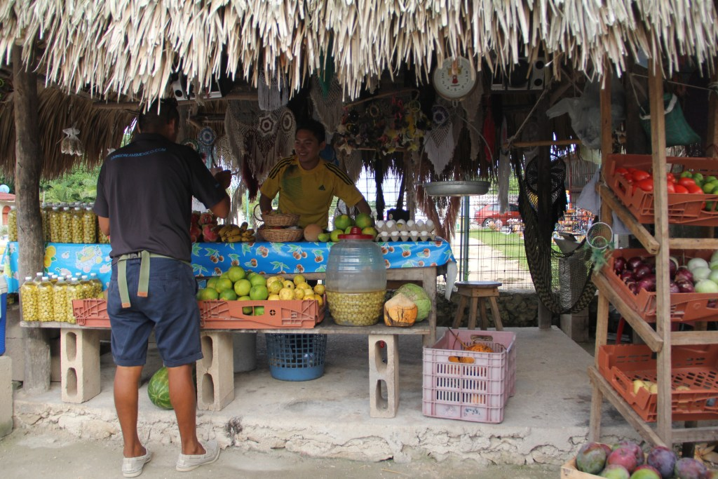 Local Fruit Stand in Yucatan