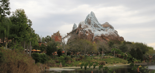 Expedition Everest Animal Kingdom