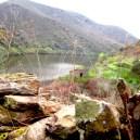 margem do rio Côa