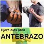 Guía completa de ejercicios para antebrazo -Técnica correcta y cómo entrenar.