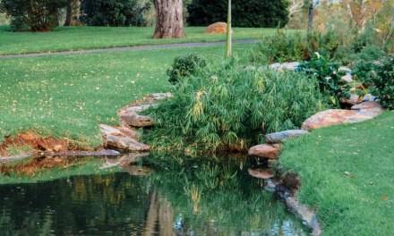 Adelaide Veale Gardens (South Australia)