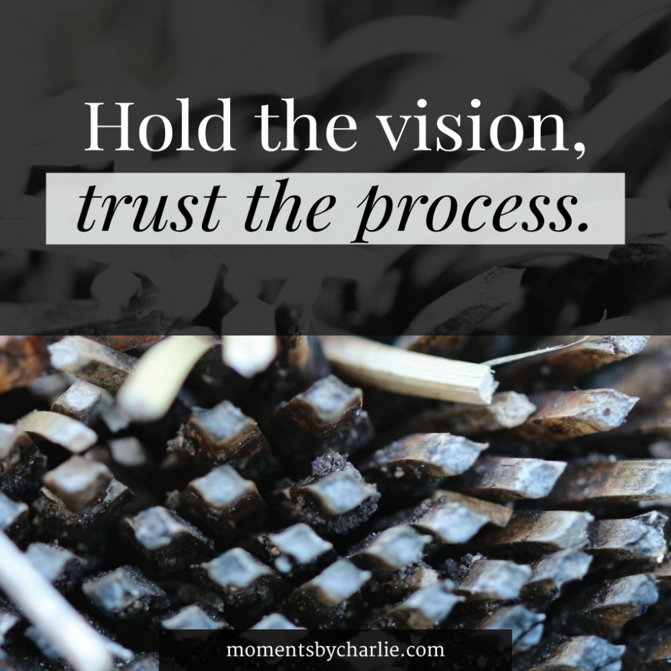 Quote - Hold the vision, trust the process // Moments by Charlie | Art + Fashion + Lifestyle plus Photography | Made in Australia