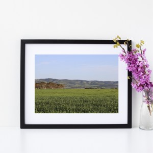 Nature Photography Fine Giclee Print | Aldinga Beach, South Australia | Size A4 | By Adelaide Artist Charlie Albright | Moments by Charlie Blog - Online Shop - Creative Freelance Services | Adelaide, South Australia