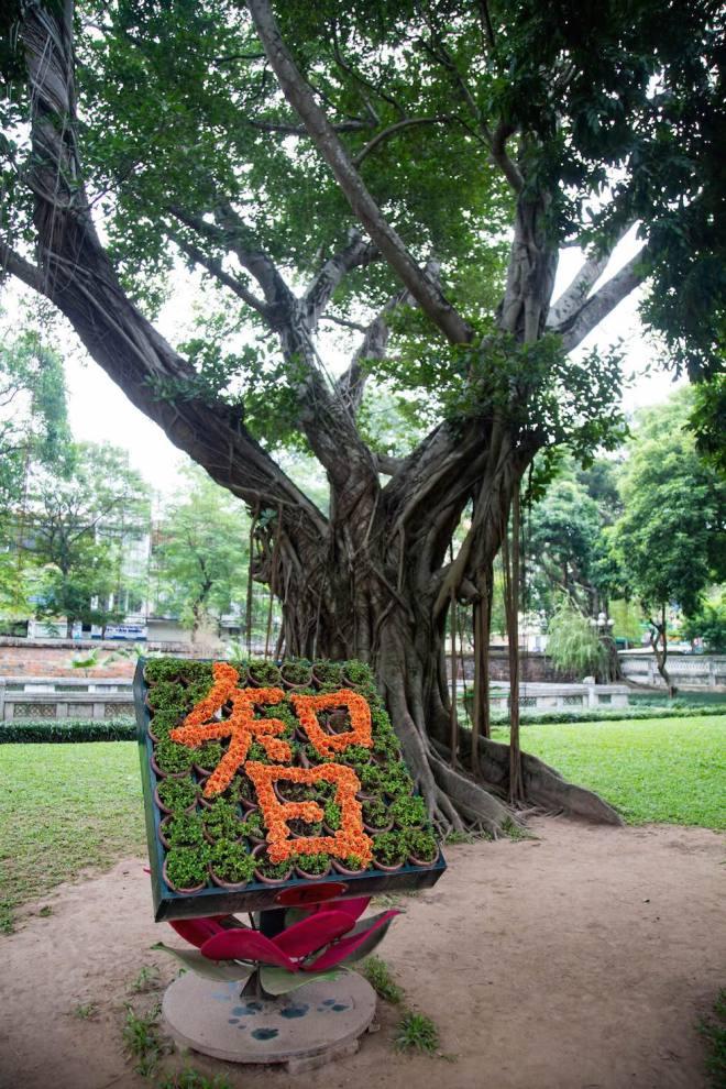 Hanoi-Temple of literature