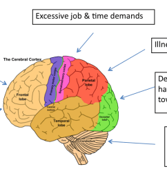 affect the nerve cells and becomes another way that the brain becomes sensitized and causes the pain signals to become amplified  [ 1526 x 556 Pixel ]
