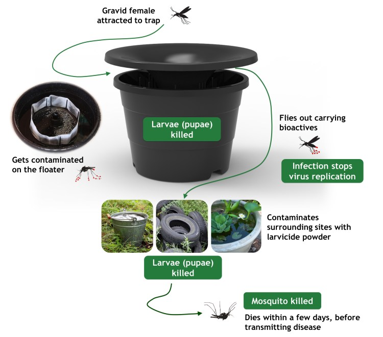 In2Care mosquito control system