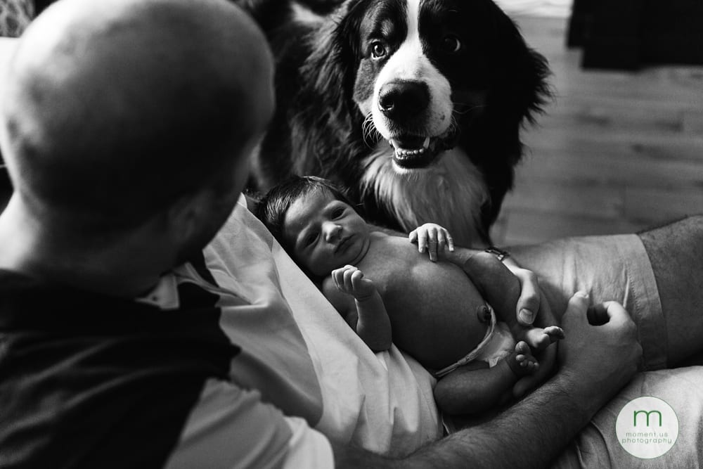 dad with daughter and dog