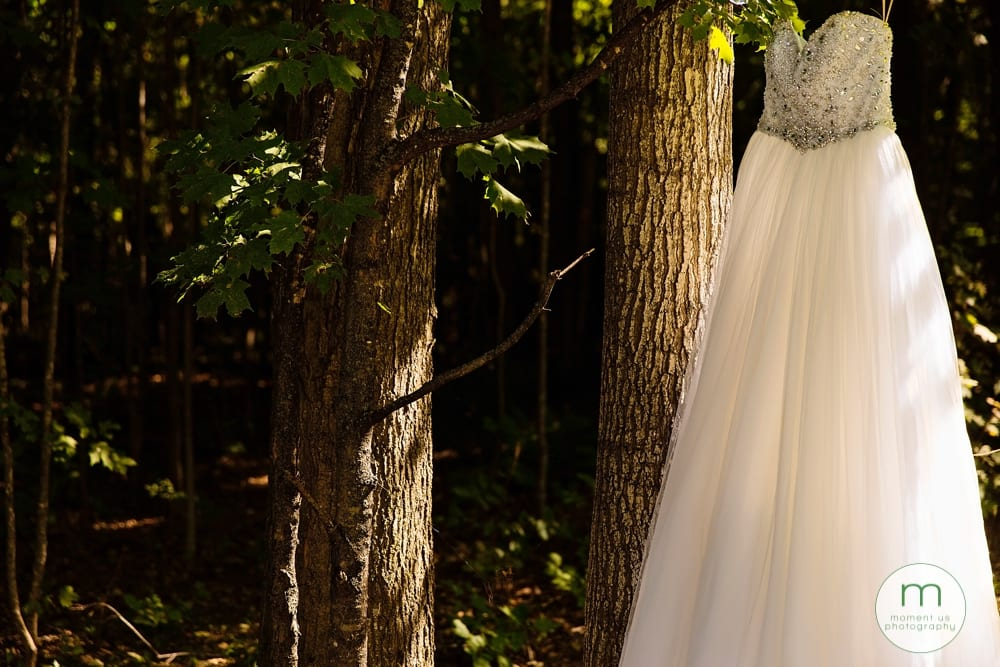 dress hanging in forest