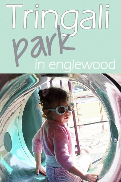 Tringali Playground in Englewood
